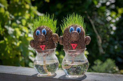 grass_figurines_vase_garden_green_toy_cute_decoration-784192